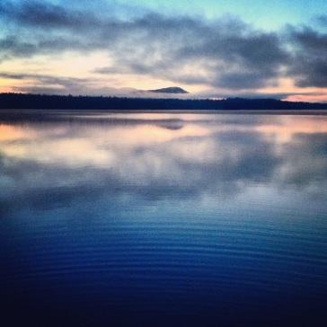 Good Morning Maine The Life And Works Of Marshall James Kavanaugh